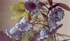 Вязаные крючком цветы - Колокольчики.  Диаметр вязаных цветов 4 см.
